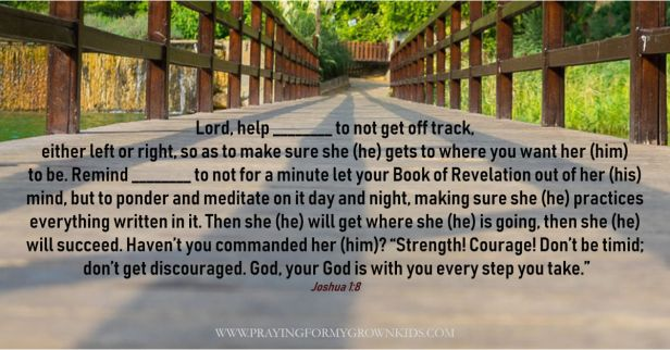"""Lord, help ________ to not get off track,  either left or right, so as to make sure she (he) gets to where you want her (him)  to be. Remind ________ to not for a minute let your Book of Revelation out of her (his)  mind, but to ponder and meditate on it day and night, making sure she (he) practices everything written in it. Then she (he) will get where she (he) is going, then she (he)  will succeed. Haven't you commanded her (him)? """"Strength! Courage! Don't be timid;  don't get discouraged. God, your God is with you every step you take."""" Joshua 1:8"""